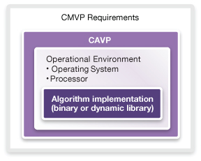 CAVP is one small section of CMVP certification (Source: Synopsys)